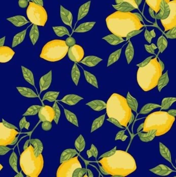 Tecido Nacional Coleção Limão Siciliano Azul  (0)