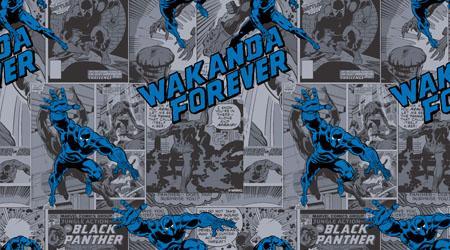 Tecido Tricoline Personagens Marvel Pantera Negra (0)