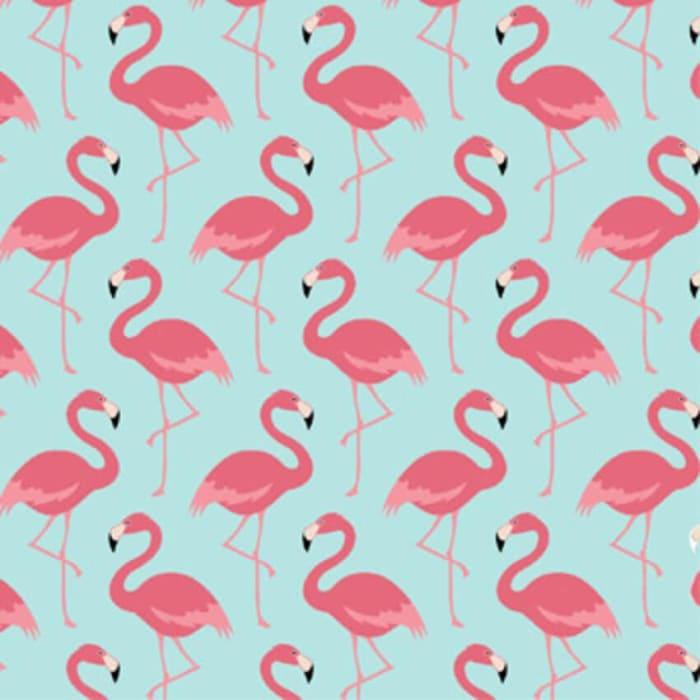 Tecido Nacional Coleção Flamingo (0)